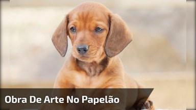 Obra De Arte No Papelão, Confira Esse Desenho De Cachorrinho Em 3D!