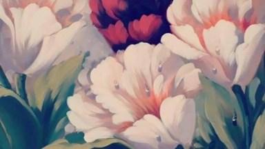 Vídeo Com Lindas Fotos De Quadros Com Desenhos De Flores, Confira!
