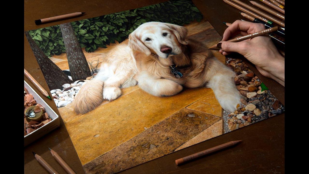 Vídeo com lindo desenho feito com lápis de cor simplesmente perfeito