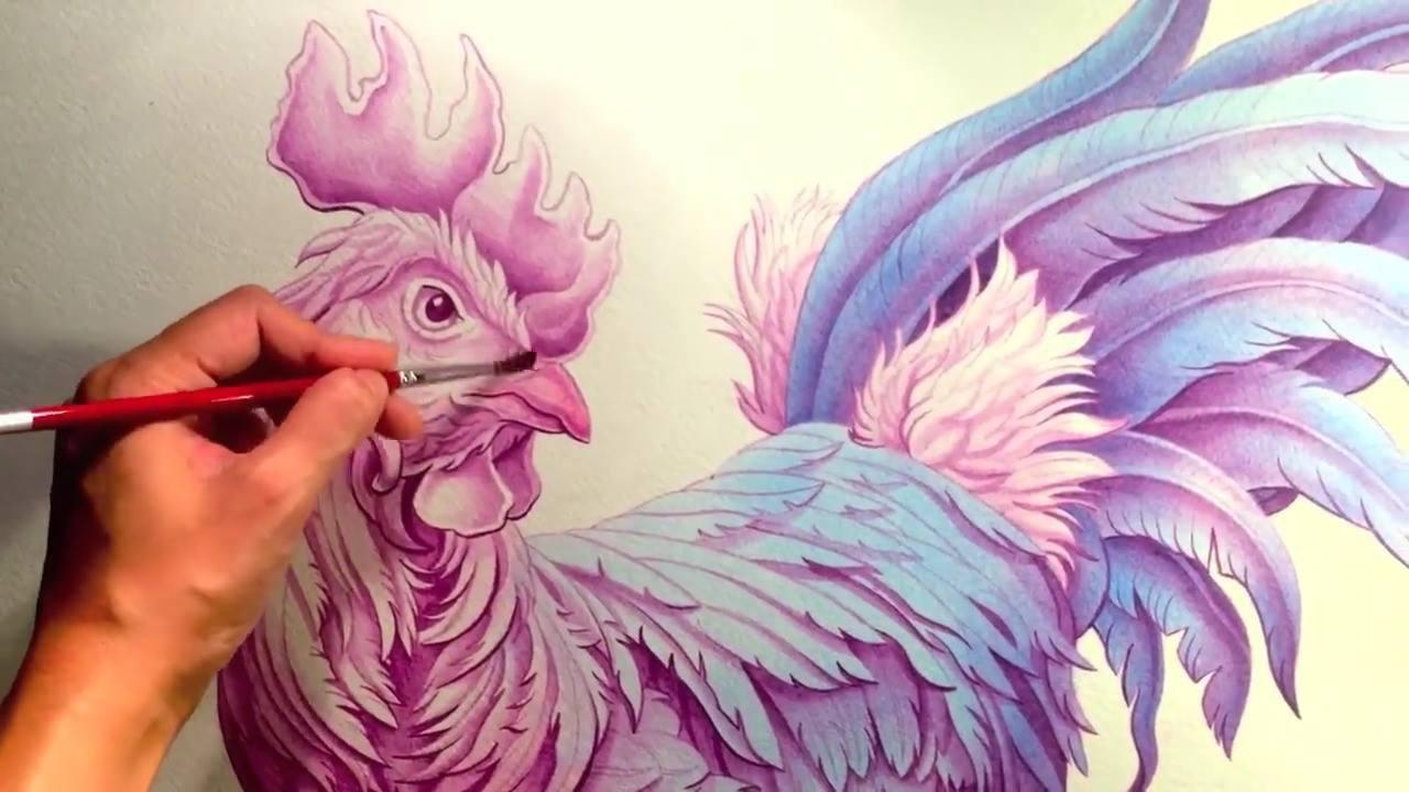 Vídeo com pintura em quadro de um galo maravilhoso
