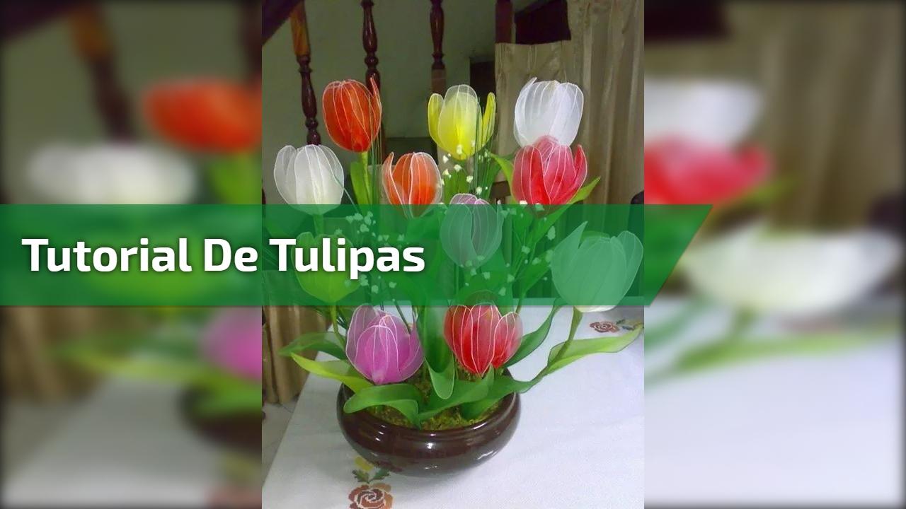 Tutorial de Tulipas