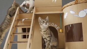 Casa De Papelão Para Distrair Seus Gatinhos, Aprenda Fazer Agora Mesmo!