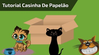 Casinha De Papelão Para Gatos, Veja Como Faze-La Para Seu Gatinho!