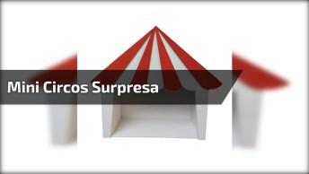 Mini Circos Para Enfeitar Aniversário, Serve Até Como Sacolinha Surpresa!