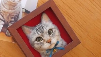 Retrato De Gato Em 3D, O Resultado Ficou Incrível, Confira!