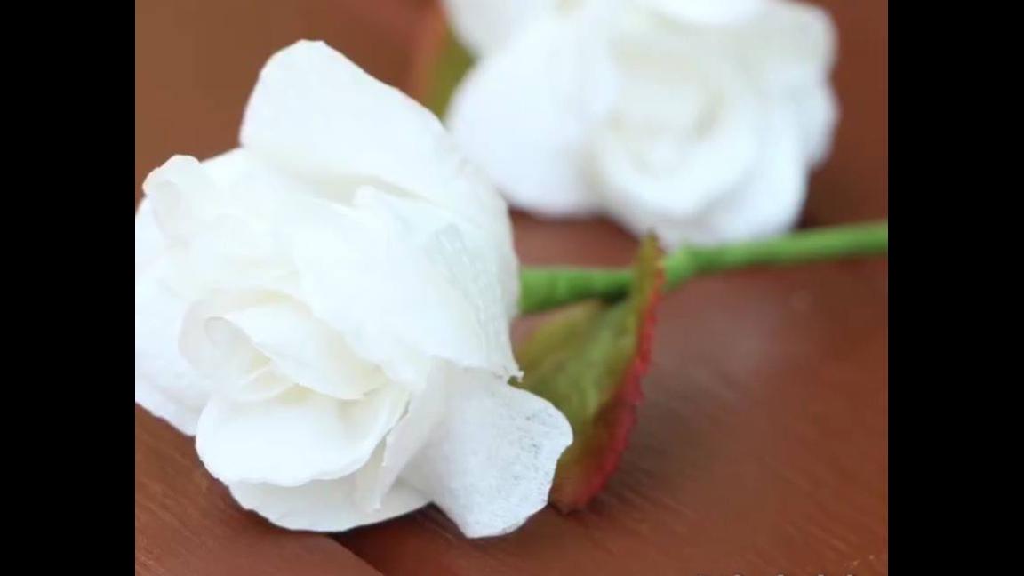 Rosas feitas com papel higiênico