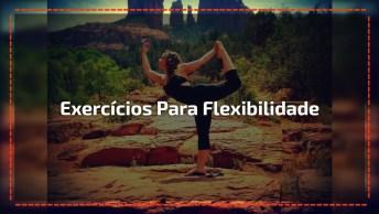 Exercícios Para Melhorar A Flexibilidade Do Corpo, Comece A Se Exercitar!