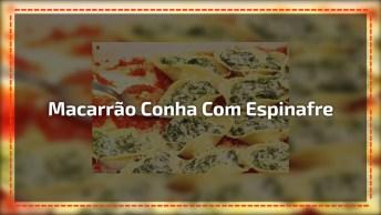Macarrão Conha Com Creme Cremoso De Espinafre, Uma Delicia De Receita!