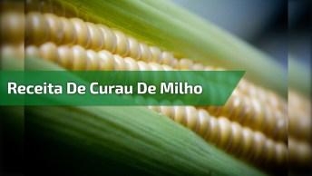 Receita De Curau De Milho Verde Com 4 Espiga De Milho, Confira!