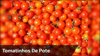 Tomatinhos De Pote, Veja Como Fazer Essa Delicia Agora Mesmo!