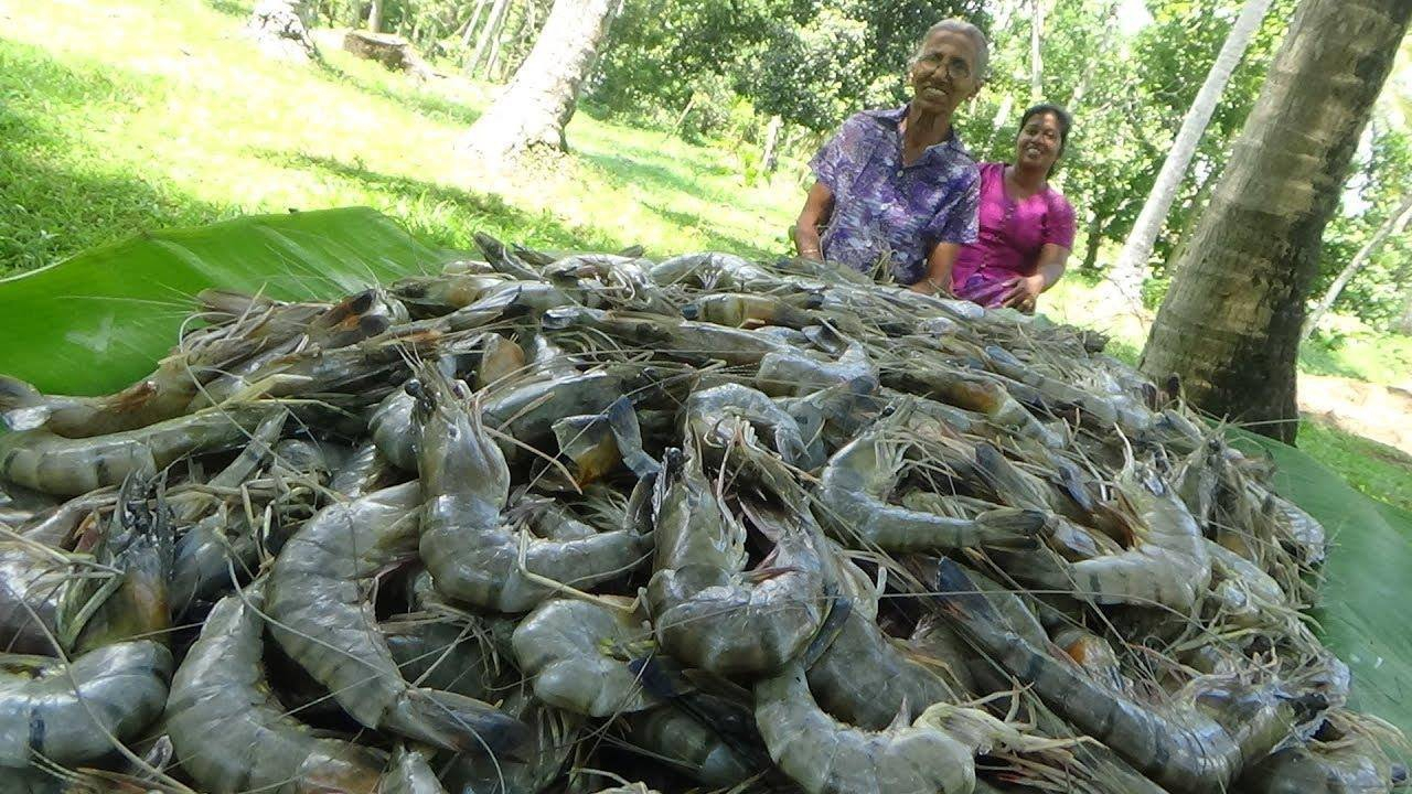 Veja como é preparado camarões de forma bem simples e saborosa
