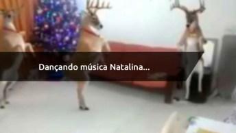 Veados Dançando Música De Natal, Envie Pelo Whatsapp E Diverta Seus Amigos!