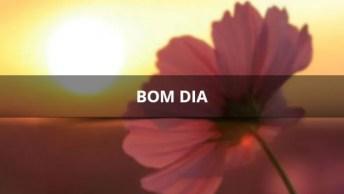 Vídeo Com Linda Mensagem De Bom Dia, A Música De Fundo É Mais Linda Ainda. . .
