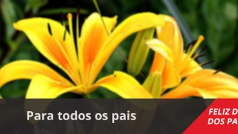 Vídeo Com Mensagem De Feliz Dias Dos Pais, Para Facebook E Whatsapp!