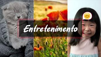 Vídeos de Entretenimento