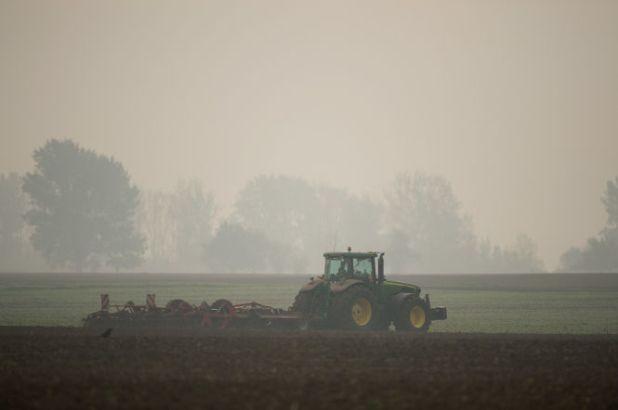 Zur Erntezeit im Herbst sind auf deutschen Straßen viele Traktoren unterwegs