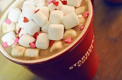 Beverages-delicious-hot-hotchocolate-marshmellow-favim.com-222518_large