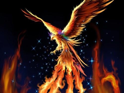 Phoenix-fantasy-17884366-1024-768_large