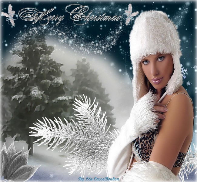 Merry Christmas by léa cassebonbon 2011
