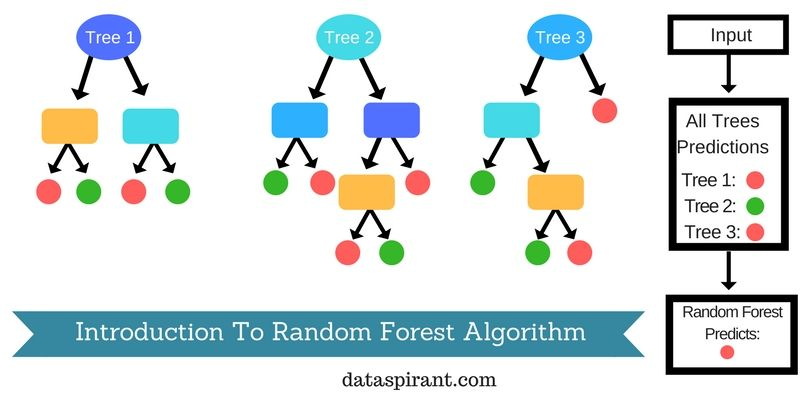 How the random forest algorithm works in machine learning