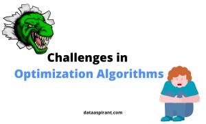 Challenges in optimization algorithms