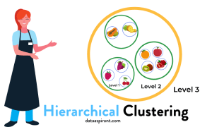 Hierarchical Clustering Algorithm