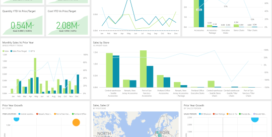 Data Bear Power BI Sales Dashboard