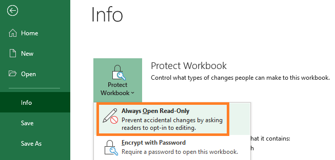 set Excel file read only info settings