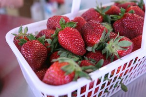 Strawberries are already on the market in parts of North Carolina.