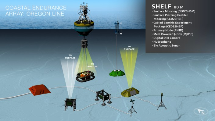 Schematic of the configuration of moorings and seafloor instruments at the Shelf site on the Endurance Array Oregon Line. Credit: OOI Cabled Array program & the Center for Environmental Visualization, University of Washington