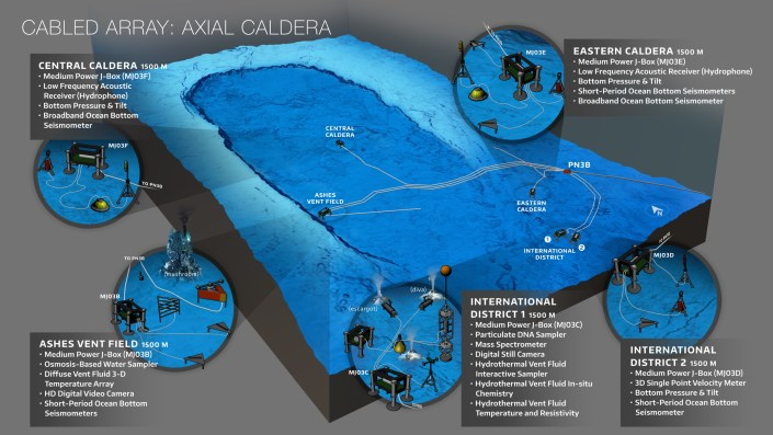 Schematic of the configuration of instruments and platforms on the Axial Caldera that are part of the Regional Cabled Array.