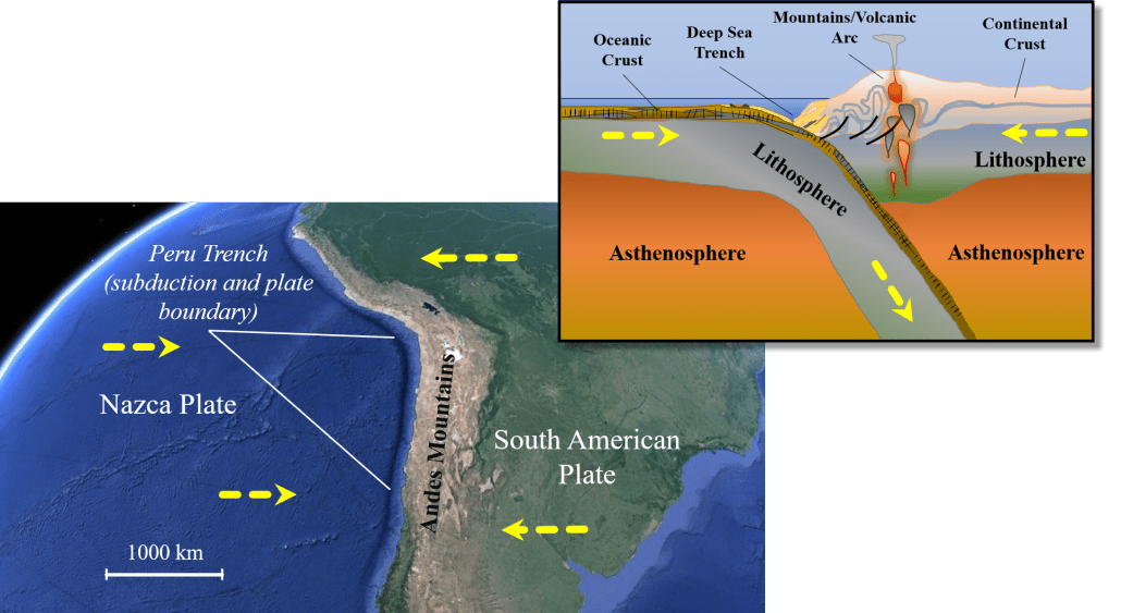 Diagram of subduction zone of Nazca plate subducting under the South American Plate resulting in a trench between the plates off the west coast of South America and the Andes mountains along the west coast of South America.