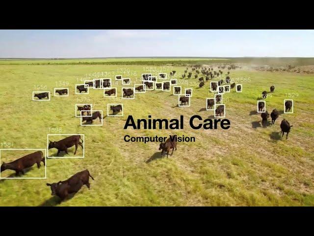 Computer Vision in farming