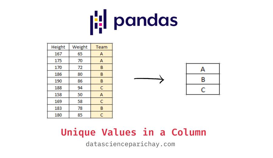 Get unique values in a column of pandas dataframe