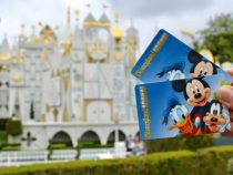 Disneyland will launch new annual pass program this year