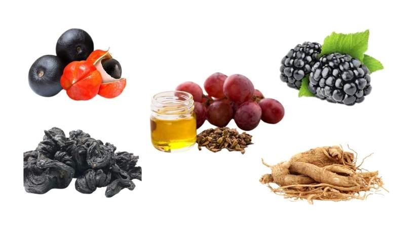 Ingredients Of Biotox Gold