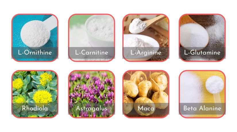 VivaSlim Ingredients