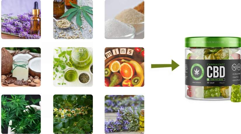 CannaLeafz CBD Gummies Ingredients