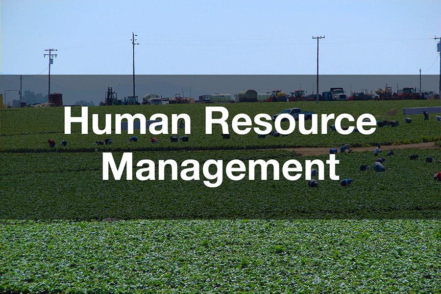 New Document Management Teaser