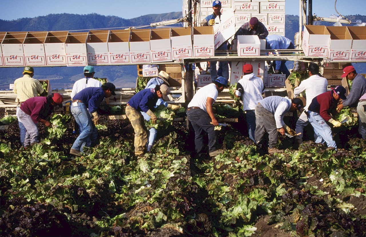 UPDATE: Farm labor overtime bill passes Senate, now its back to to the Assembly