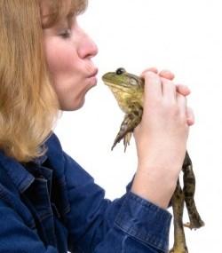 Kissingfrog E1267224354782