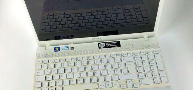 Datenrettung Sony Vaio. Maintec unterstützt Omihunde e.V.