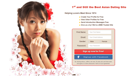 Cherry Blossoms - Southeast Asian Dating Site