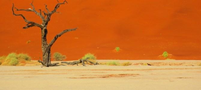 ナミビア ナミブ砂漠  390DAYS part2  (APR/17/2019)