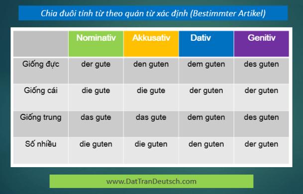 Học tiếng Đức miễn phí với DatTranDeutsch - Bảng chia đuôi tính từ với quán từ xác định