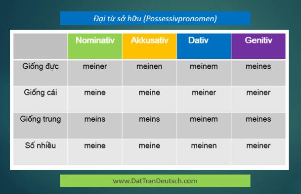 Học tiếng Đức miễn phí với DatTranDeutsch - Bảng đại từ sở hữu