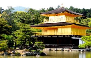 京都の永久脱毛クリニック・病院