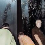 Aquarium, 1984