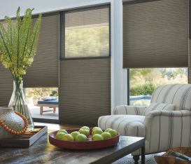 Duette Living Room Window Coverings