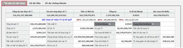 Kiểm tra tài sản và sức mua trên web SmartOne